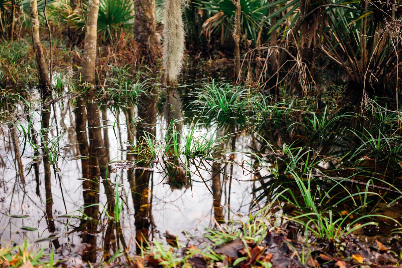 madelene-farin-new-orleans-138.jpg