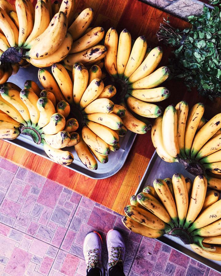Madelene-Farin-Philippines-034.jpg