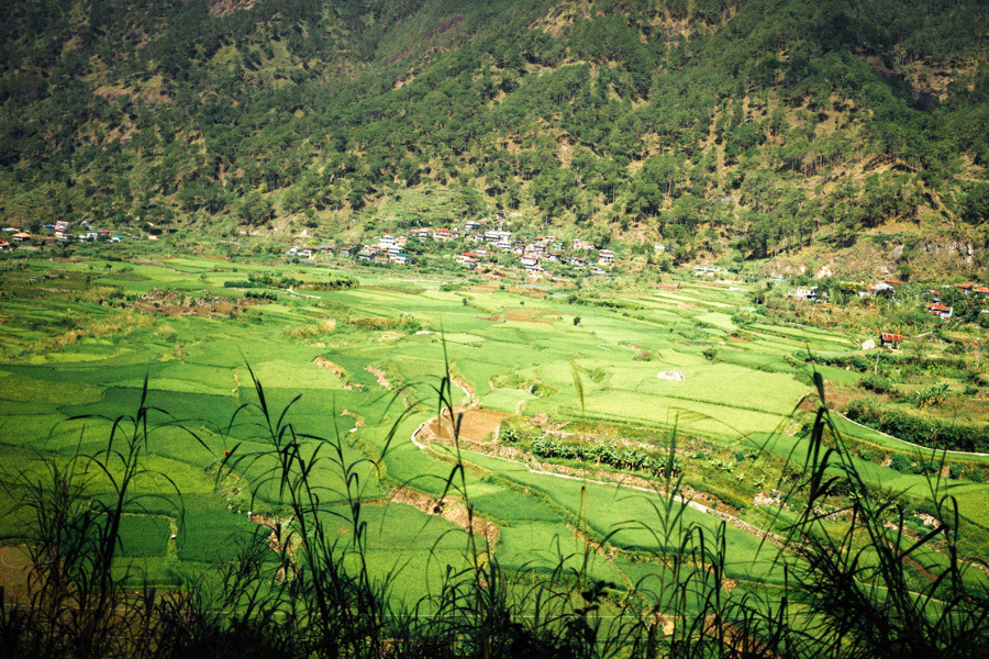The rice terraces of Sagada. These fields of green are all over the Mountain Province of the Philippines.