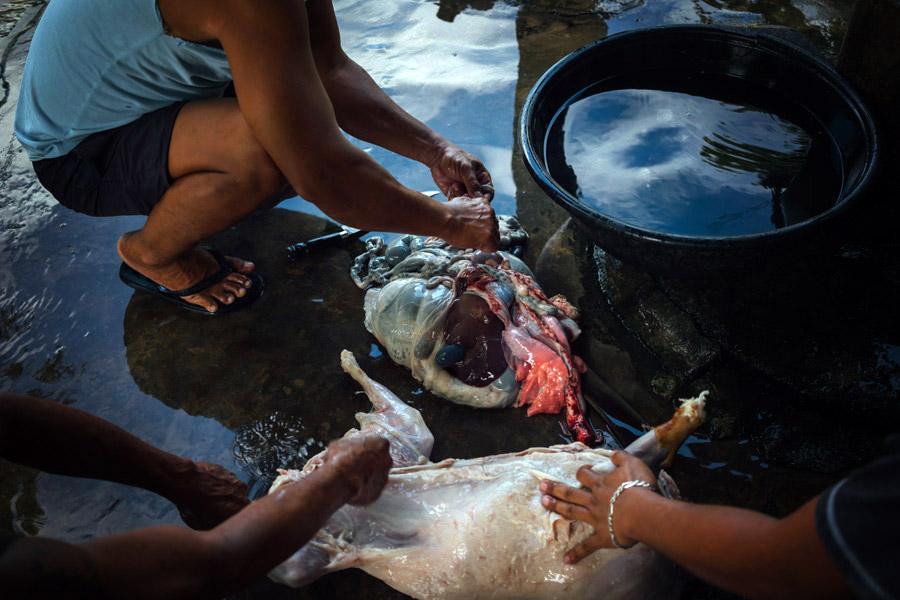 Madelene-Farin-Philippines-120.jpg