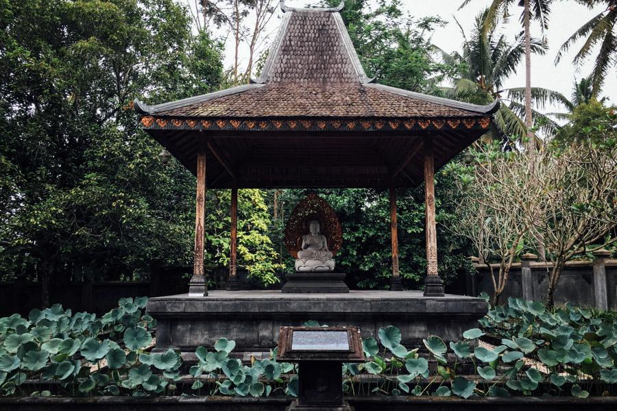 Madelene-Farin-Indonesia-0518.jpg