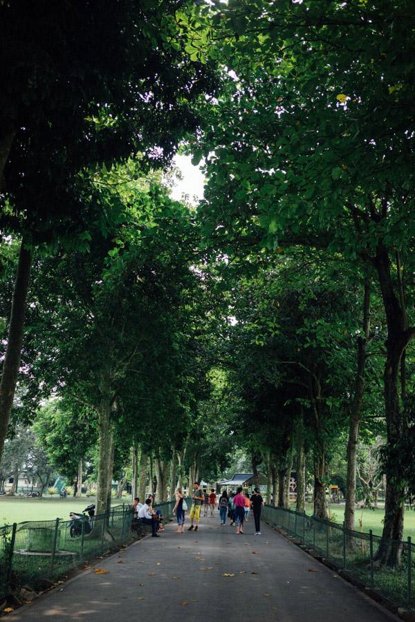 Madelene-Farin-Indonesia-0544.jpg