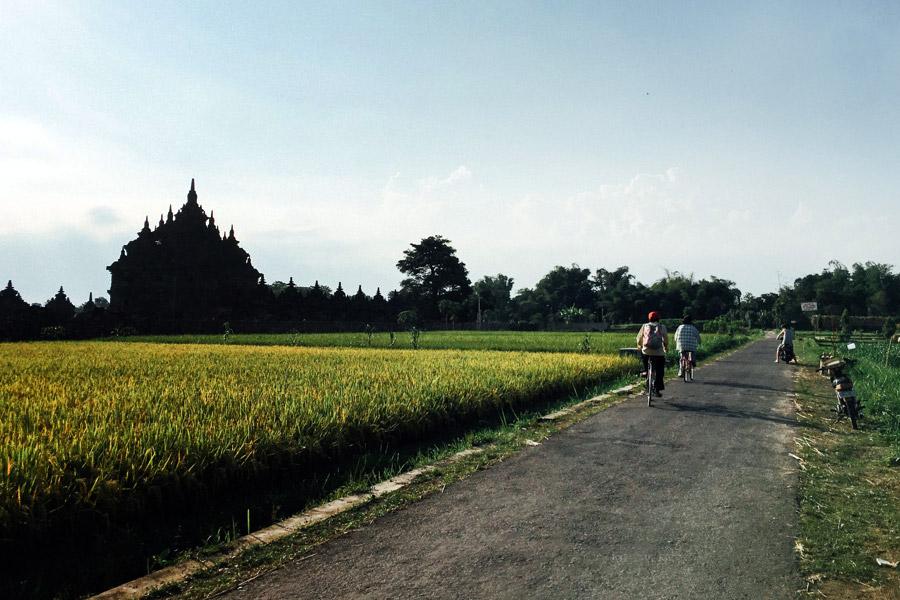 Madelene-Farin-Indonesia-0597.jpg