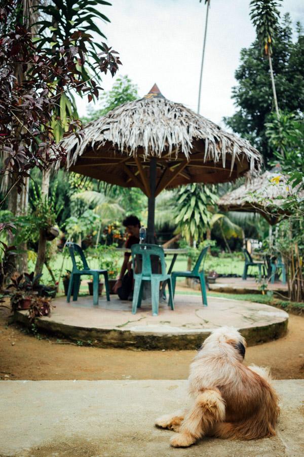 Madelene-Farin-Indonesia-0716.jpg