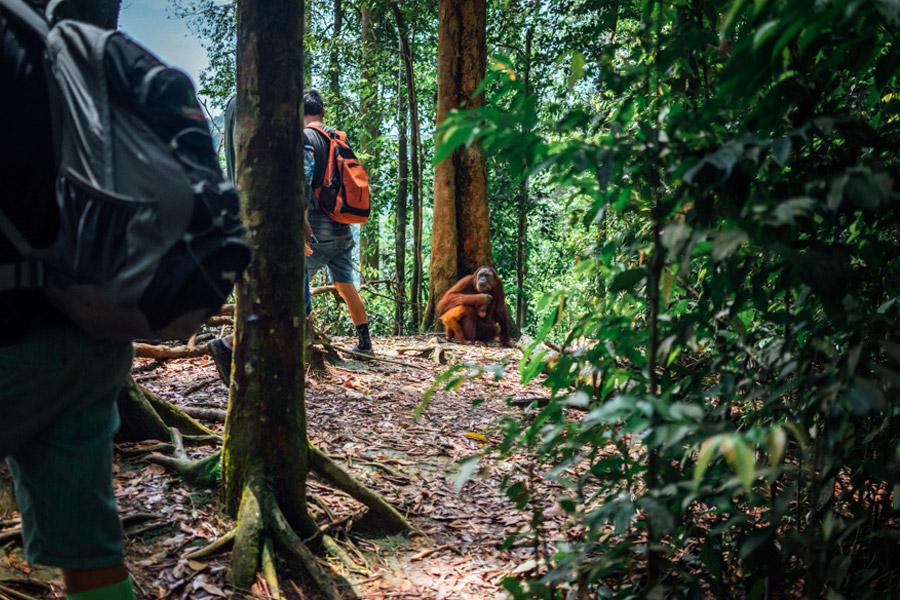 Madelene-Farin-Indonesia-0824.jpg
