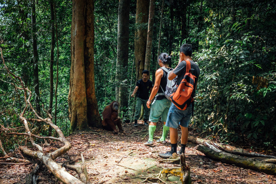Madelene-Farin-Indonesia-0822.jpg