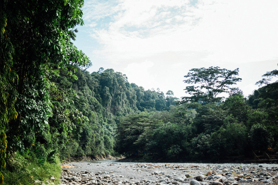 The beautiful riverside town of Bukit Lawang is the gateway to Gunung Leuser National Park in North Sumatra, Indonesia.