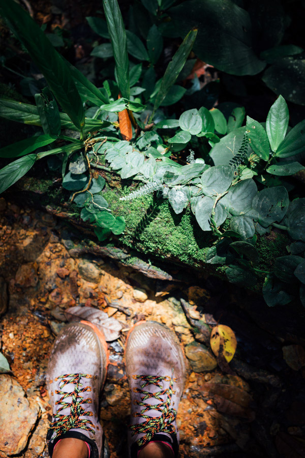 Deep orange clay earth from these jungles are often used to craft pottery.
