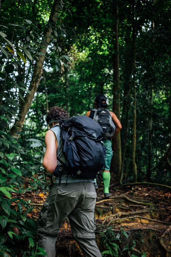 Trekking through the jungles of North Sumatra.