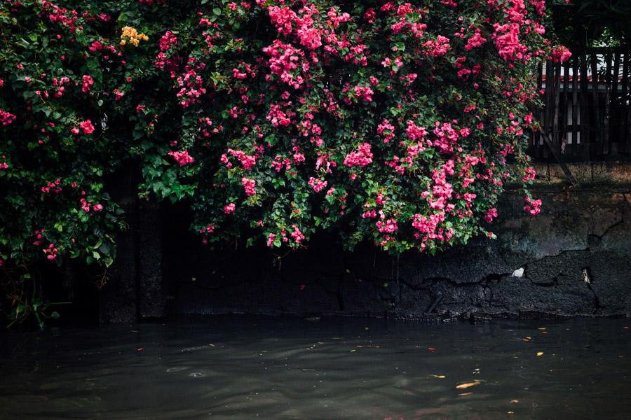 Madelene-Farin-Thailand-060.jpg