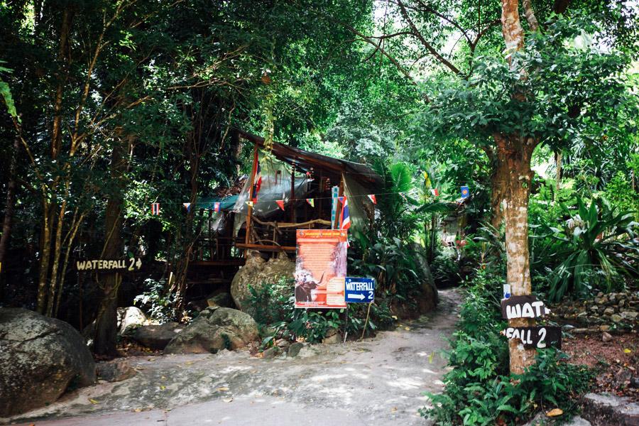 Madelene-Farin-Thailand-105.jpg
