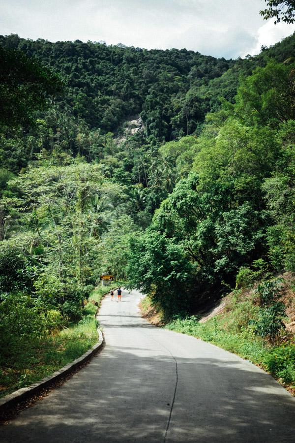 Madelene-Farin-Thailand-106.jpg