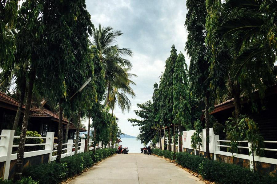 Madelene-Farin-Thailand-122.jpg