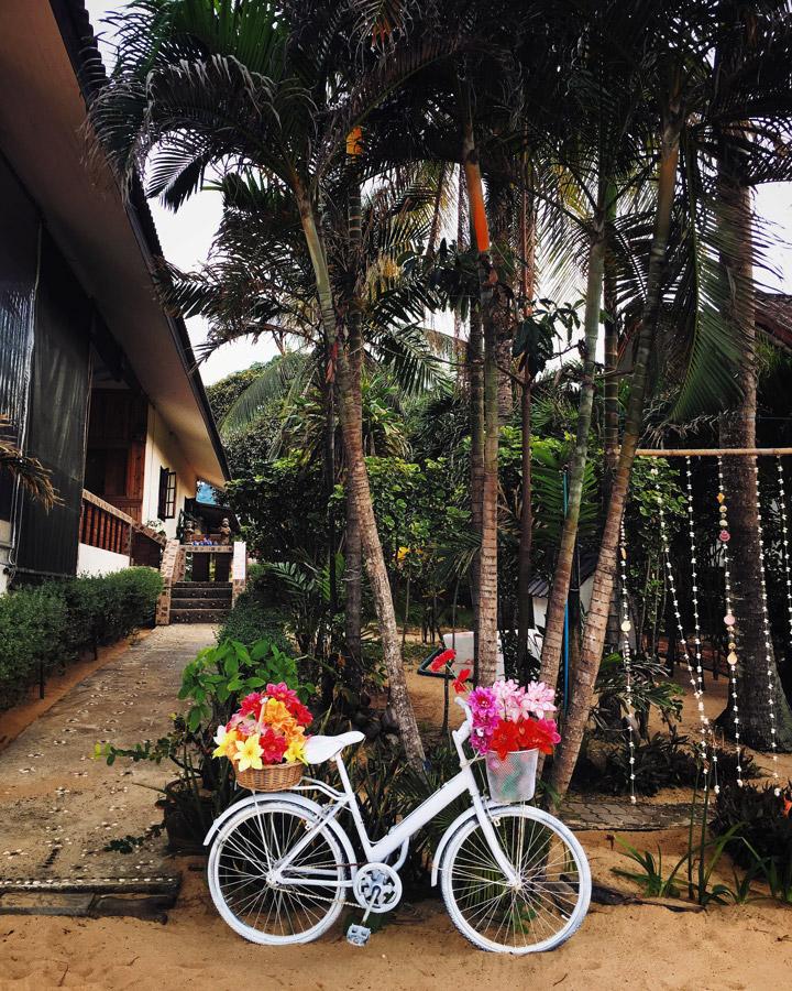 Madelene-Farin-Thailand-123.jpg