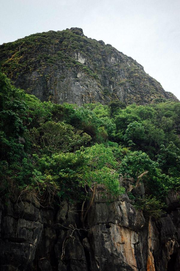 Madelene-Farin-Thailand-151.jpg
