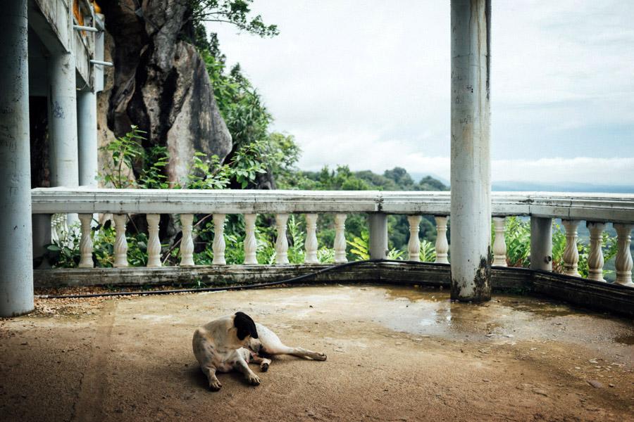 Madelene-Farin-Thailand-169.jpg