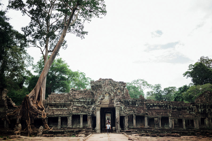 On the left, two giant silk-cotton trees overtake the southern towers of Preah Khan.