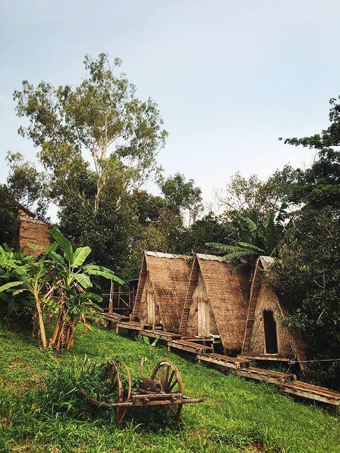 The Tree Lodge, owned by Mr. Tree, who also guides the wonderful Mondulkiri Project.