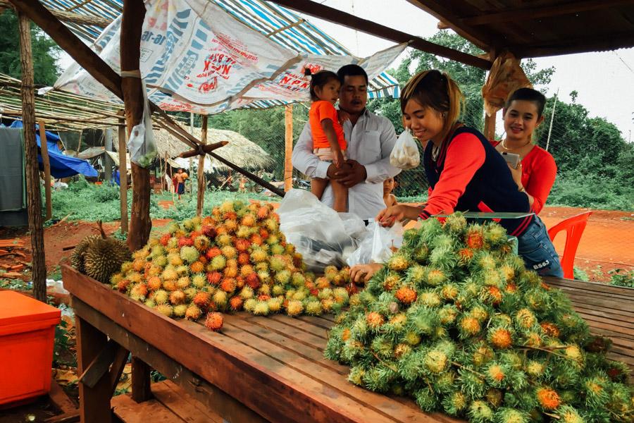 Madelene-Farin-Cambodia-1008.jpg