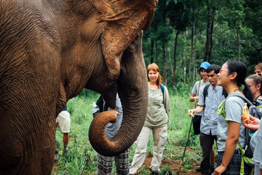 Madelene-Farin-Cambodia-1026.jpg