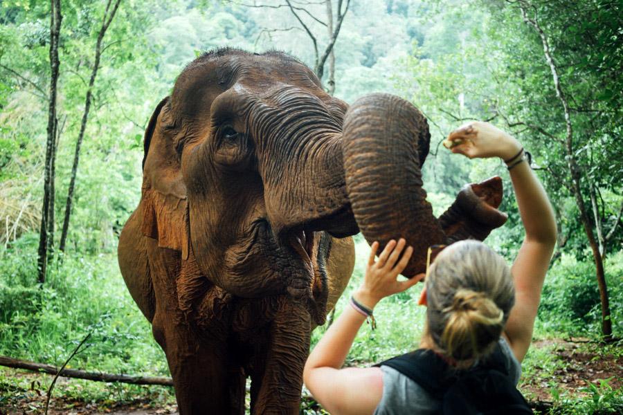 Madelene-Farin-Cambodia-1048.jpg
