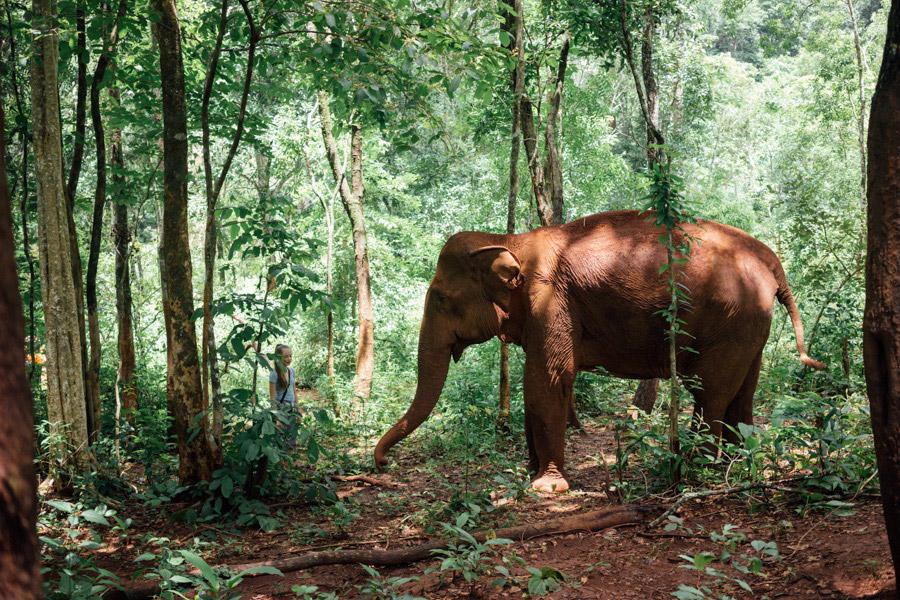 Madelene-Farin-Cambodia-1056.jpg