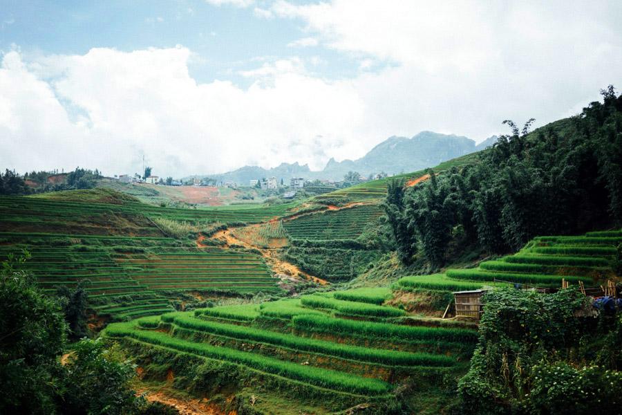 Madelene-Farin-Vietnam-0867.jpg
