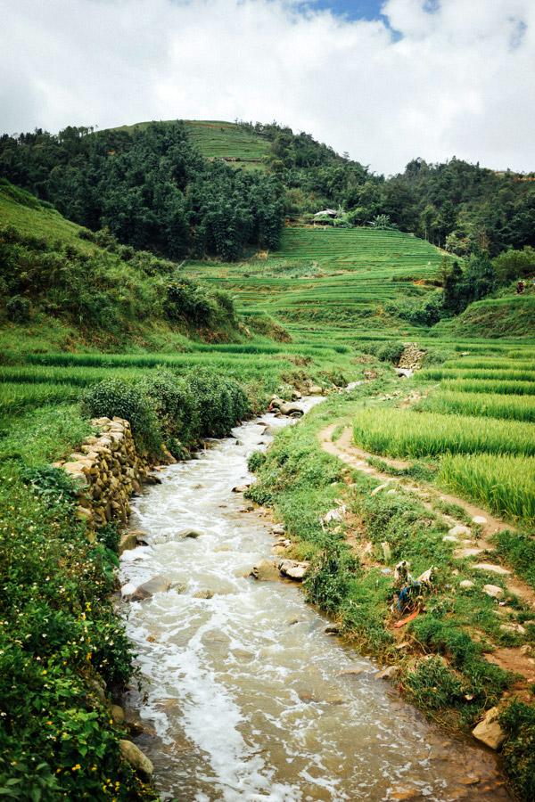 Madelene-Farin-Vietnam-0881.jpg