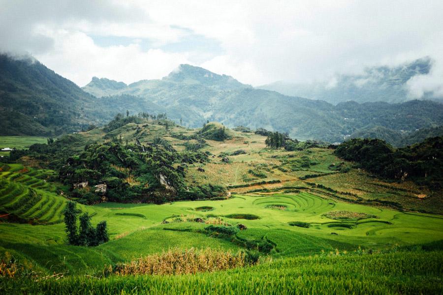 Madelene-Farin-Vietnam-0910.jpg