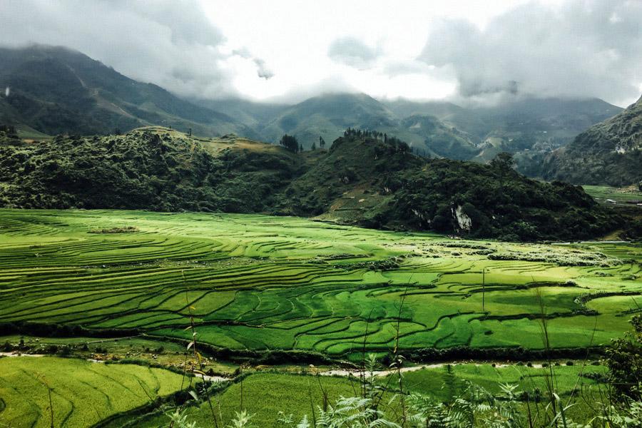 Madelene-Farin-Vietnam-0956.jpg