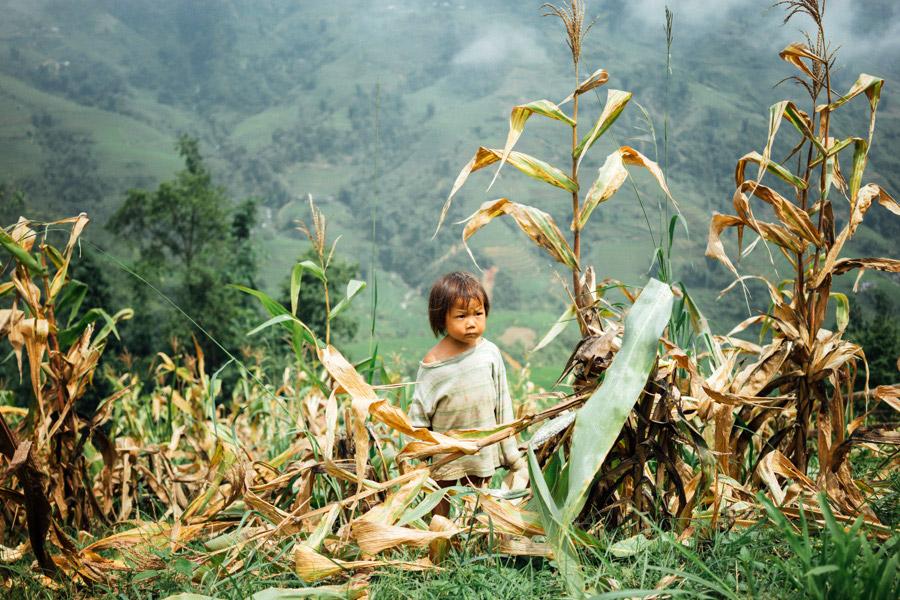 Madelene-Farin-Vietnam-1044.jpg