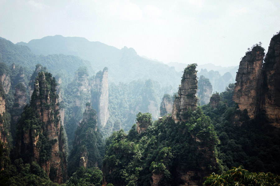 A view of a few of Zhangjiajie's famous sandstone peaks. Sea water carved them out millions of years ago giving way to these magnificent karst pillars. It takes four days to fully explore the entire national park. We decided to stop at day two, and skip the elevator waits and new longest and tallest glass bridge in the world, which opened last weekend.