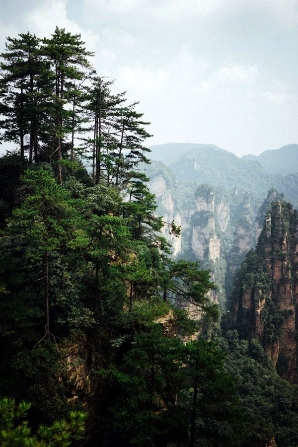 Scenes from Zhangjiajie National Forest Park.
