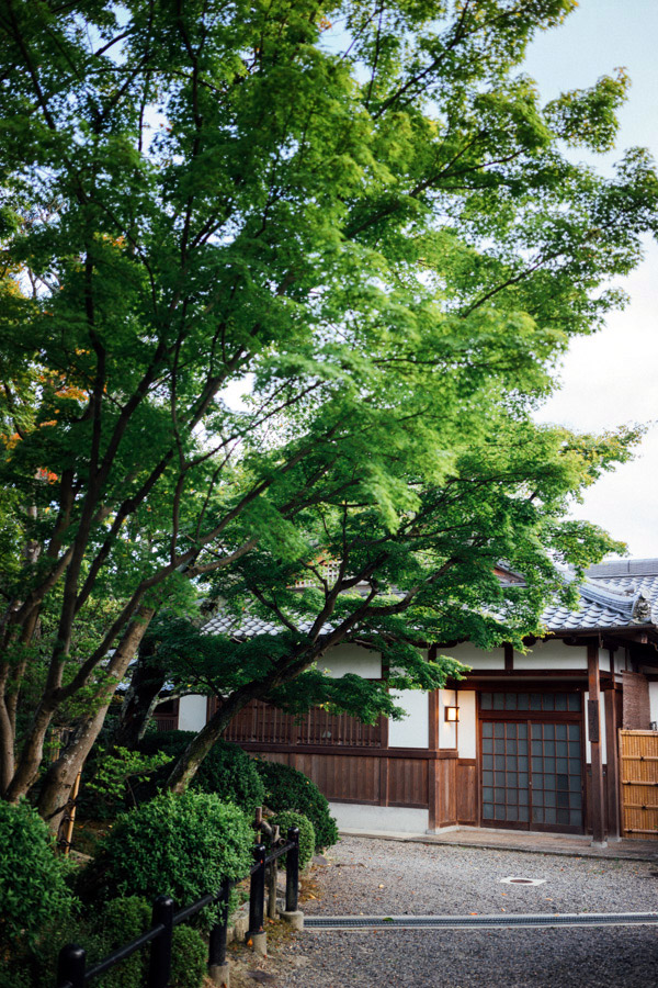 Madelene-Farin-Japan-0283.jpg