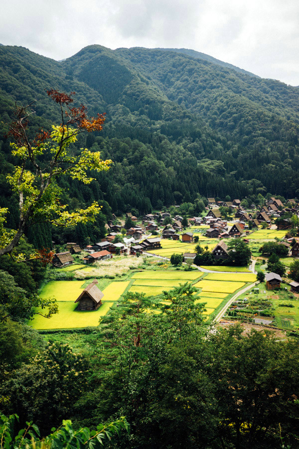 Less than an hour from Takayama in the heart of the Japanese Alps, is a magical place straight out of a storybook. The village of Shirakawa-go is at the base of a mountain range, along a river, and is a patchwork of thatched roofed farmhouses and rice fields in every shade of green.