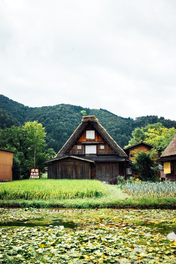 Madelene-Farin-Japan-0458.jpg