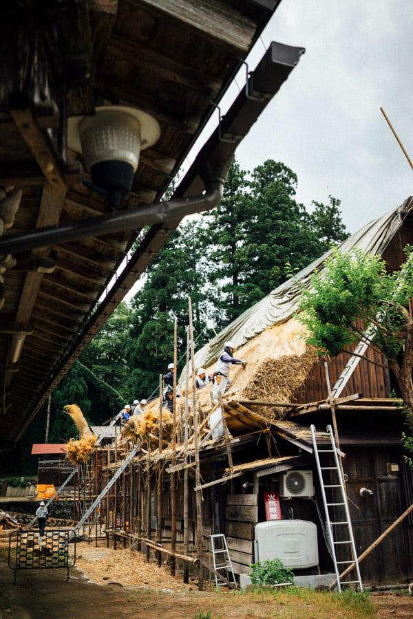Madelene-Farin-Japan-0473.jpg