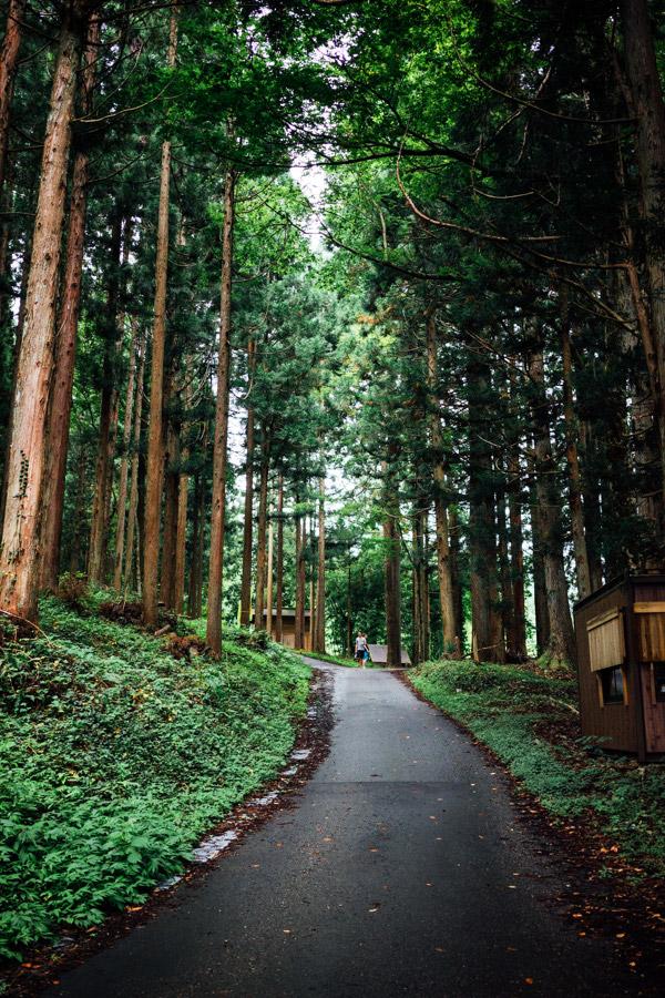 Madelene-Farin-Japan-0475.jpg