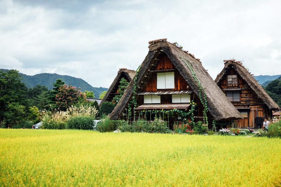 Madelene-Farin-Japan-0494.jpg