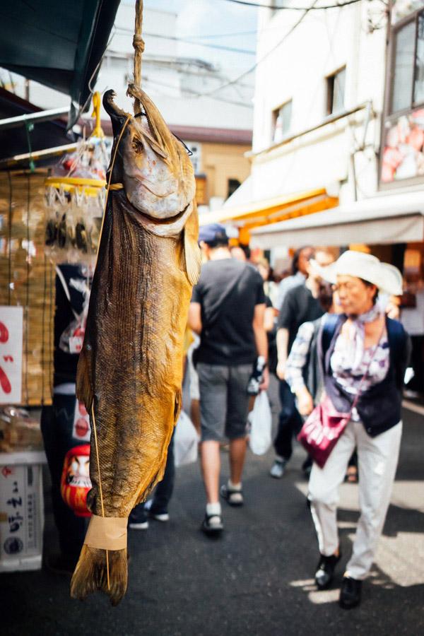 Madelene-Farin-Japan-0641.jpg