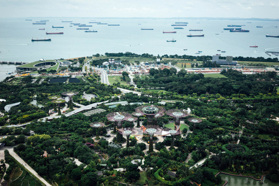 Madelene-Farin-Singapore-0025.jpg