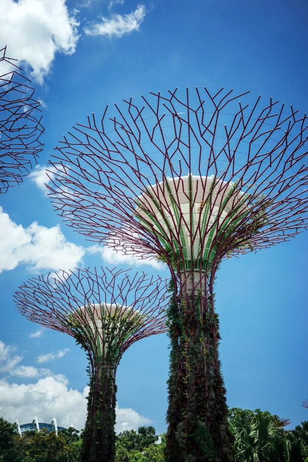 Madelene-Farin-Singapore-0042.jpg