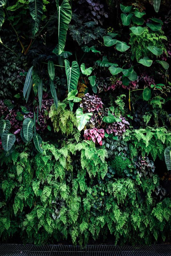 Madelene-Farin-Singapore-0055.jpg