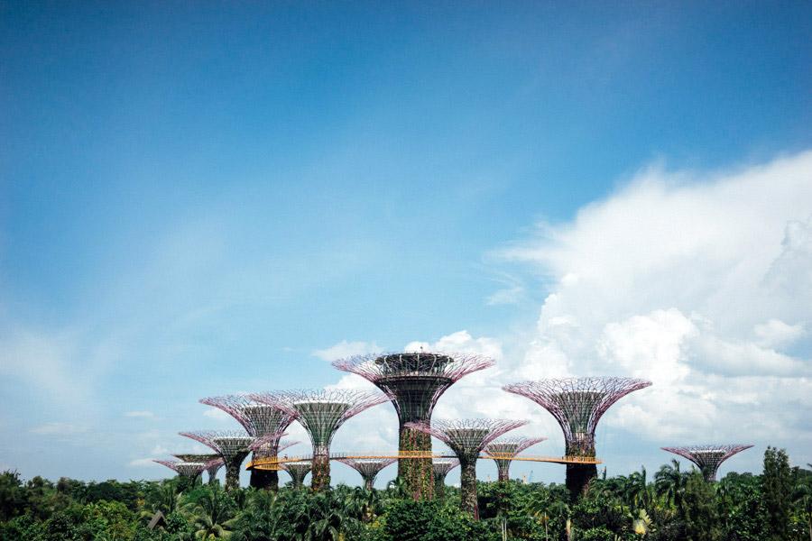 Madelene-Farin-Singapore-0076.jpg