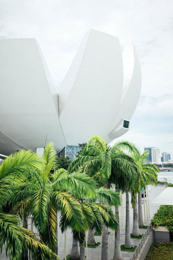 The Singapore ArtScience Museum