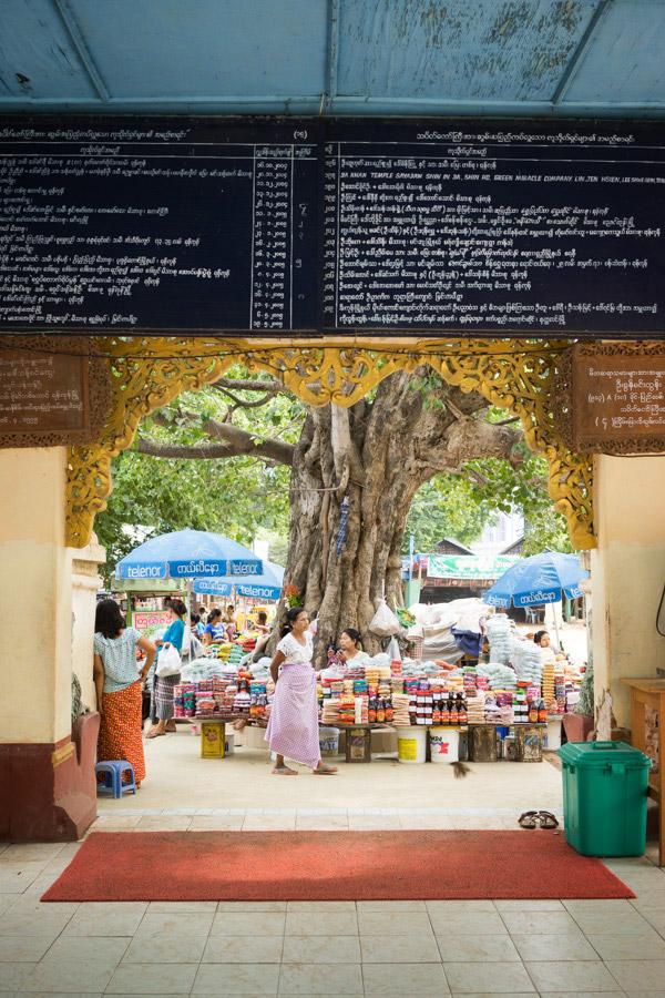 Madelene-Farin-Myanmar-0273.jpg