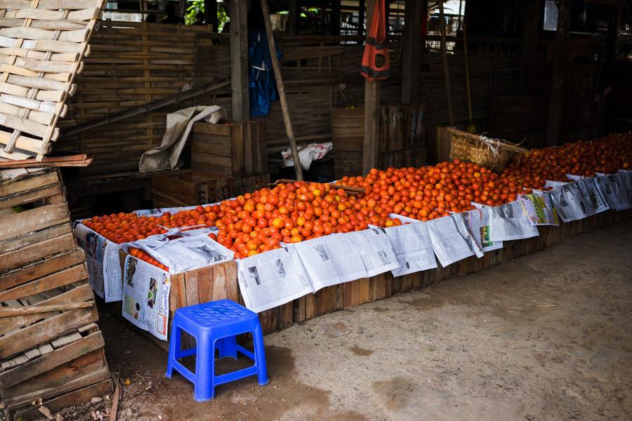 Madelene-Farin-Myanmar-0345.jpg