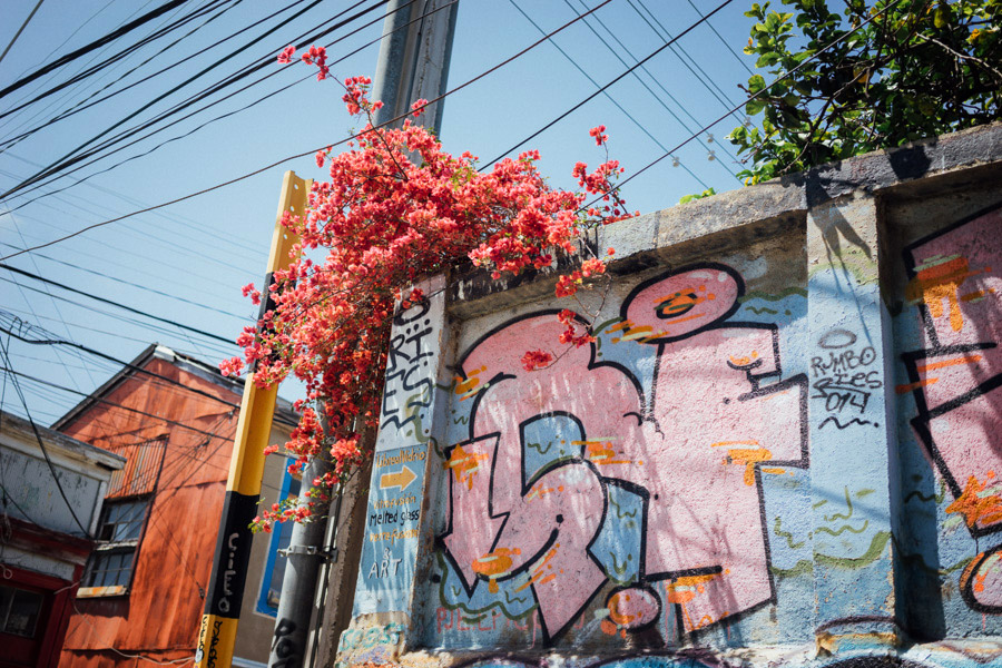 Drawn to shades of pink on the streets of Valparaiso, Chile.