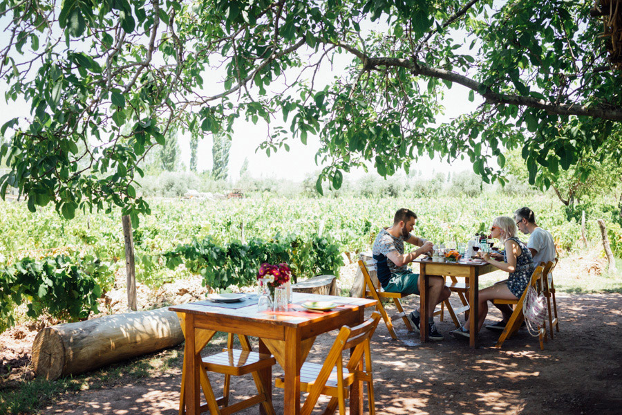 Quiet moments in Argentina's wine country.