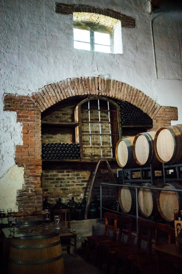 Scenes from the wine country of Mendoza, Argentina.
